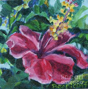 Hibiscus in Miniature by Jan Bennicoff