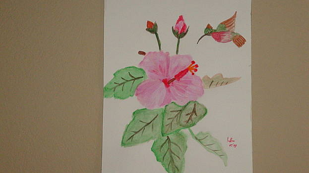 Hibiscus by Indhu Frank