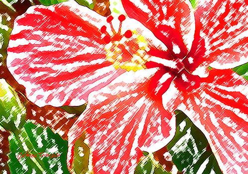 James Temple - Hibiscus
