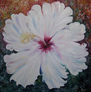 Hibiscus' Light by NHowell