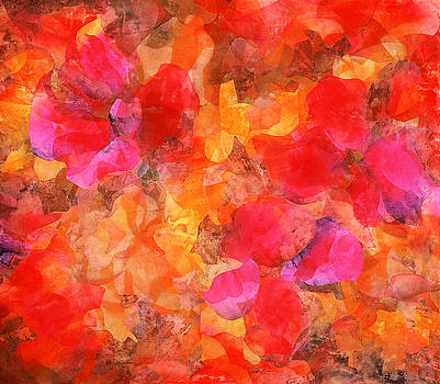 Hibiscus by Margaret Anderson