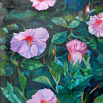Hibiscus by Michael McDougall