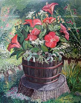 Fran Kelly - Hibiscus on Stump