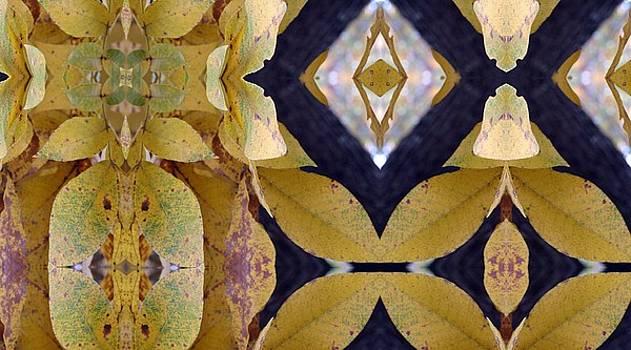 Hickory Leaves by Keri Renee