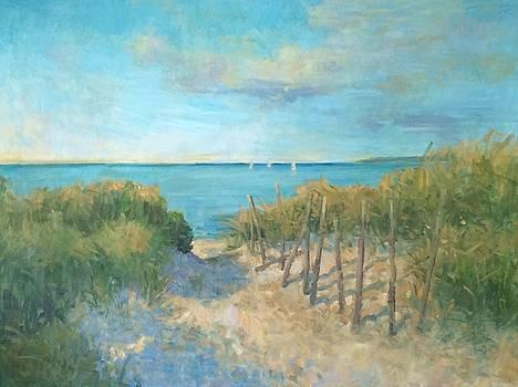 Hidden beach by Bart DeCeglie
