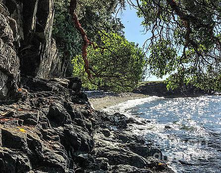 Hidden Beach by William Wyckoff