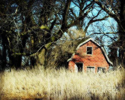 Hidden Brick Barn by Kathy M Krause
