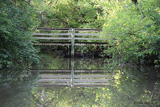 Hidden Bridge by Brenda Redford