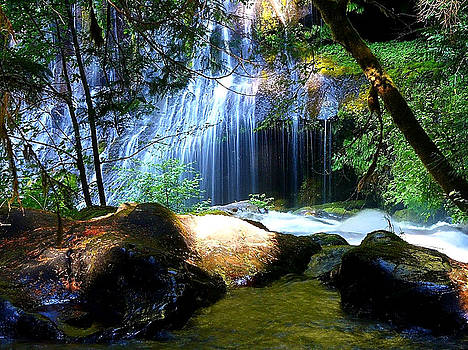 Hidden Falls by Digital Art Cafe