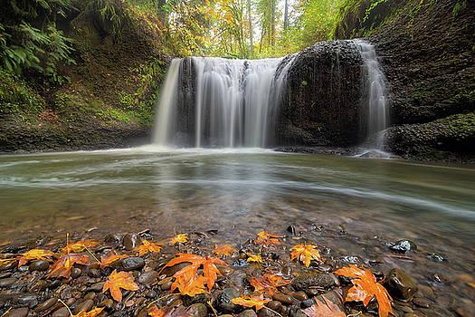 Hidden Falls in Clackamas Oregon by David Gn