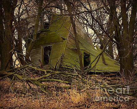 Hidden Green House by Kathy M Krause