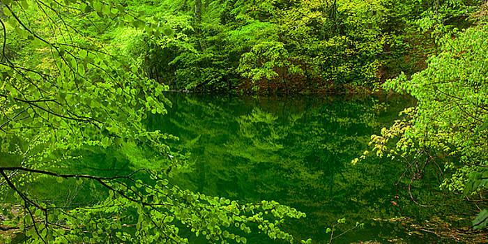 Hidden Lake by Brad Brizek
