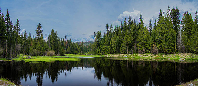 Hidden lake by the meadow by Khalid Mahmoud