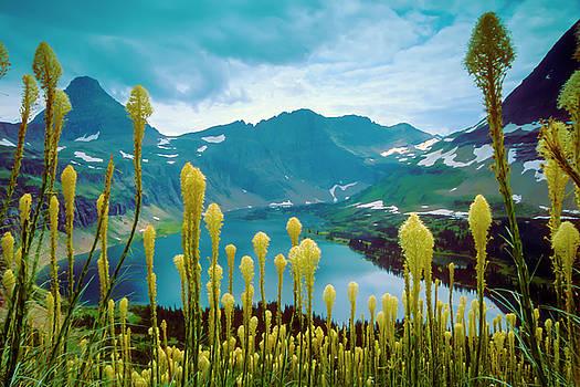Hidden Lake, GNP by Gary Beeler