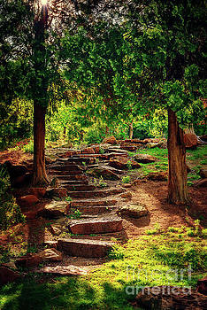 Hidden Path at Honor Heights Park by Tamyra Ayles