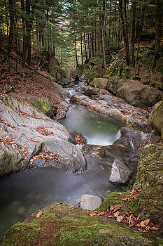 Hidden Stream by Dave Schmidt