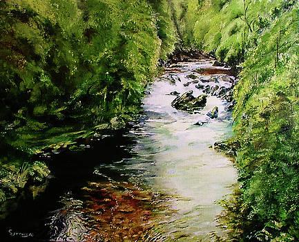 Hidden Stream by Steve James