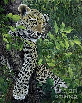 Hiding In Tree by Sid Ball