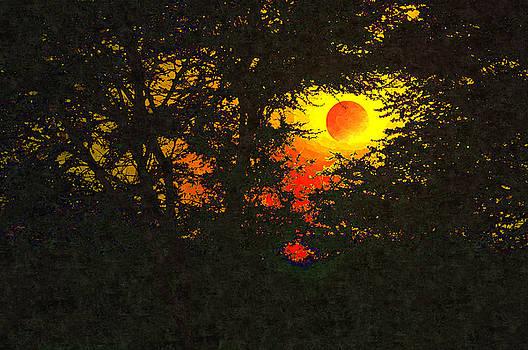 Bliss Of Art - Hiding the moon