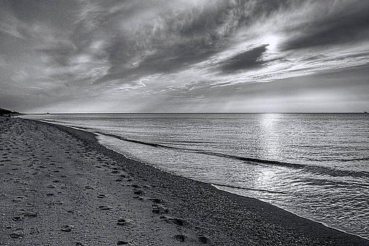 Dawn J Benko - Higbee Beach