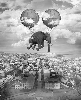 High Ambition by Solomon Barroa
