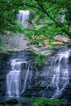 High Bank Falls by Tammy Chesney