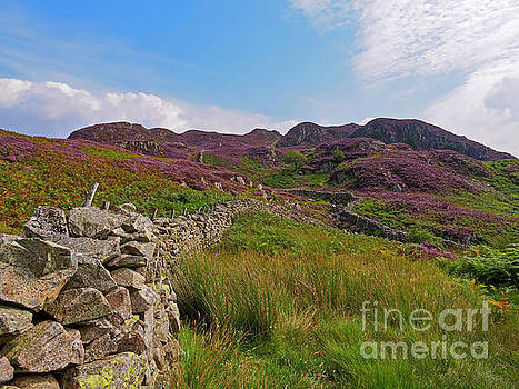 High Crag and Willygrass Gill above Stonethwaite in Borrowdale by Louise Heusinkveld