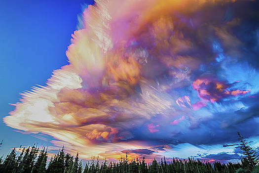 High Elevation Forest Sunset Sky Timed Stack by James BO Insogna