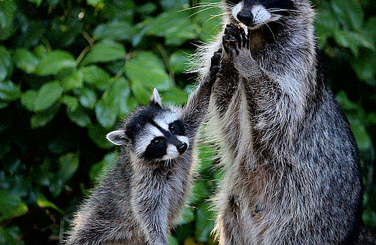 High Five Mom by Kym Backland