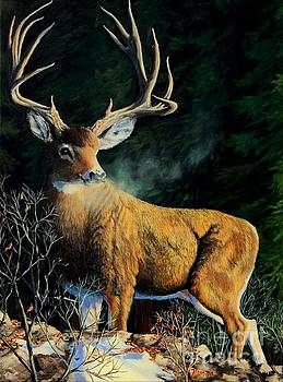 High Forest Buck by Ruanna Sion Shadd a'Dann'l Yoder