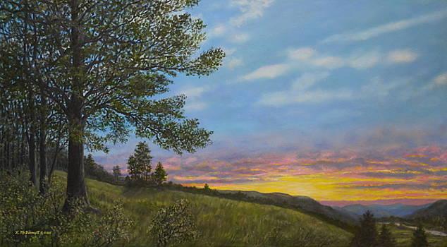 High Meadow Sundown by Kathleen McDermott