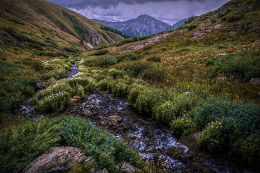 High Mountain Meadow by Linda Unger