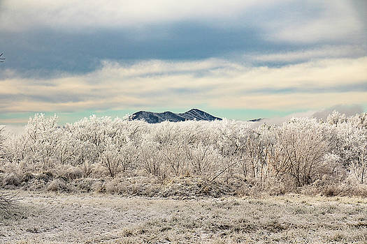 High on the Mountain Cherohala Skyway by Kelly Kennon