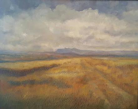 High Plains Harvest by Joe Leahy