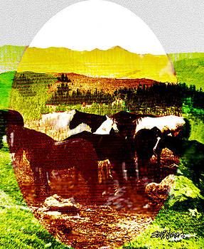 High Plains Horses by Seth Weaver