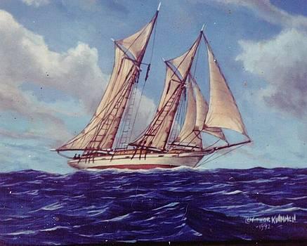 High Seas by Leif Thor Kvammen