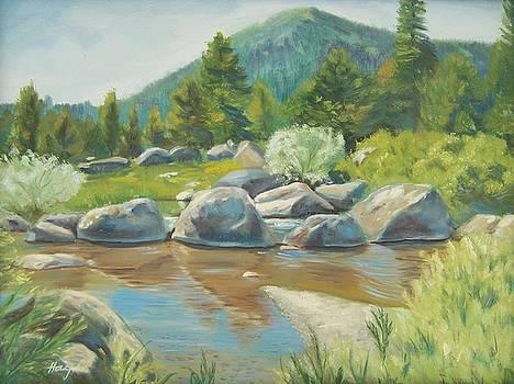 High Sierra Creek by Donna Hays