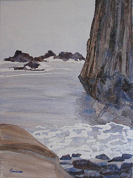 Jenny Armitage - High Tide at Seal Rock
