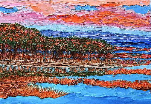 High Tide by Chrys Wilson