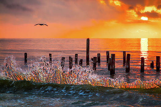 High Tide by Lisa Comperry