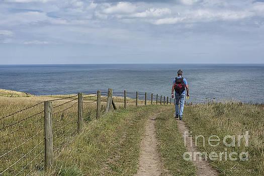 Patricia Hofmeester - Hiker on coastal path in North Yorkshire