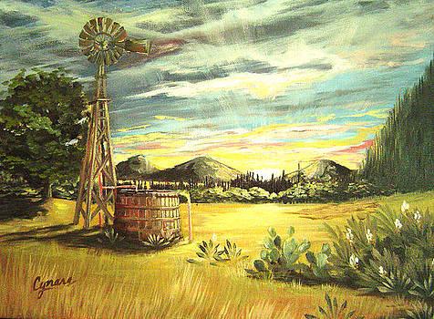Hill Country Windmill by Cynara Shelton