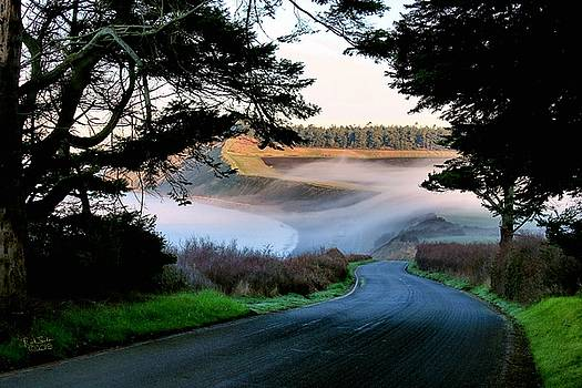 Hill Road and Fog by Rick Lawler