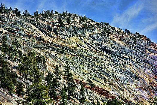Chuck Kuhn - Hills Yosemite