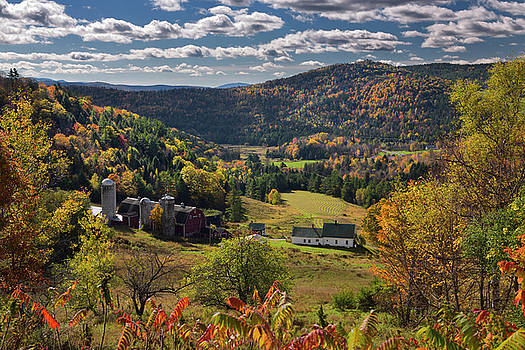 Reimar Gaertner - Hillside Acres farm valley fields Barnet Center Vermont with Fal
