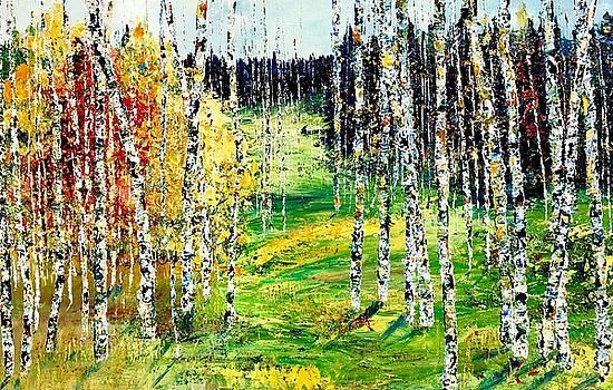 Hillside birches by Julia S Powell