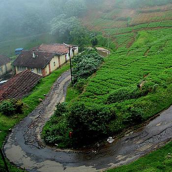 Hillside dwellings near Coonoor, India by Misentropy