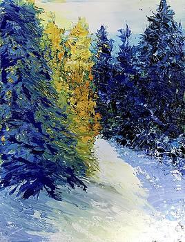 Hillside Light, Winter by Julia S Powell