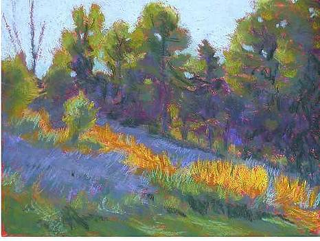 Hillside Shadows by Julie Mayser
