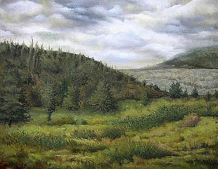 Hillside by Timothy Henneberry